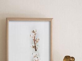 Plakat kwiaty – wprowadź do swojego wnętrza powiew natury